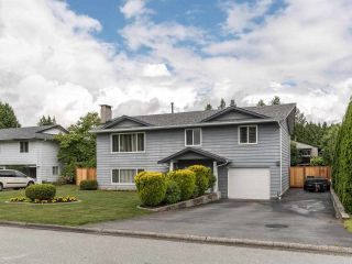 Photo 34: 19349 121A Avenue in Pitt Meadows: Mid Meadows House for sale : MLS®# R2593403