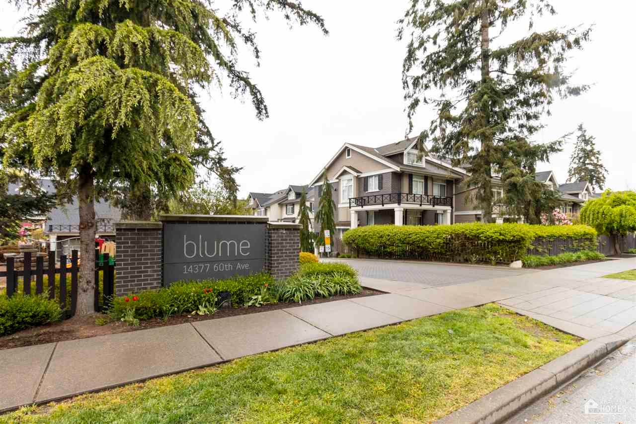 Main Photo: 29 14377 60 Avenue in Surrey: Sullivan Station Townhouse for sale : MLS®# R2570954