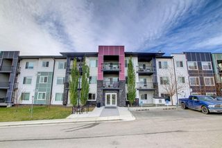 Main Photo: 207 12 Sage Hill Terrace NW in Calgary: Sage Hill Apartment for sale : MLS®# A1154372