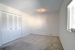 Photo 19: 132 Mardale Crescent NE in Calgary: Marlborough Detached for sale : MLS®# A1146772