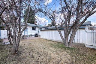 Photo 38: 166 Havenhurst Crescent SW in Calgary: Haysboro Detached for sale : MLS®# A1095089