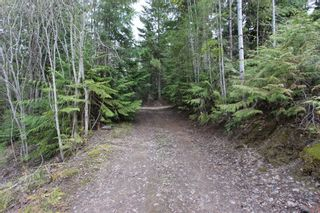 Photo 4: 2388 Waverly Drive: Blind Bay Vacant Land for sale (South Shuswap)  : MLS®# 10201100