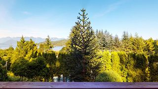Photo 14: 384 STEWART Road in Gibsons: Gibsons & Area House for sale (Sunshine Coast)  : MLS®# R2594561