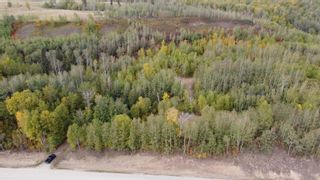 Photo 13: Hwy 11 & RR 53: Rural Parkland County Rural Land/Vacant Lot for sale : MLS®# E4265869