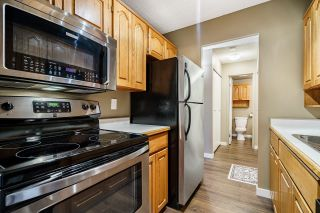 """Photo 12: 210 12096 222 Street in Maple Ridge: West Central Condo for sale in """"CANUCK PLAZA"""" : MLS®# R2608661"""