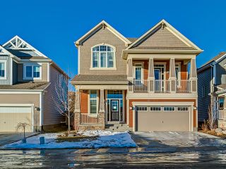 Photo 1: 144 Viewpointe Terrace in Chestermere: Lakepointe House for sale : MLS®# C3650517