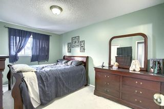 Photo 10: 163 Erin Meadow Green SE in Calgary: Erin Woods Detached for sale : MLS®# A1077161