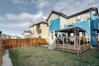 Photo 43: 43 Skyview Shores Link NE in Calgary: Skyview Ranch Detached for sale : MLS®# A1045860