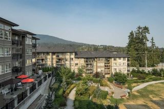 """Photo 1: 409 3156 DAYANEE SPRINGS BL in Coquitlam: Westwood Plateau Condo for sale in """"TAMARACK"""" : MLS®# R2294212"""