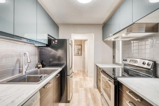 Photo 7: 307 30 McHugh Court NE in Calgary: Mayland Heights Apartment for sale : MLS®# A1138265