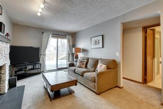 Photo 20: 216 Hawkwood Boulevard NW in Calgary: Hawkwood Detached for sale : MLS®# A1069201