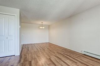 Photo 13: 3421 3000 MILLRISE Point SW in Calgary: Millrise Apartment for sale : MLS®# C4265708