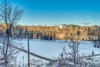 Photo 29: 450 310 8 Street SW in Calgary: Eau Claire Apartment for sale : MLS®# A1060648