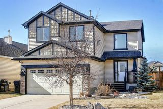 Main Photo: 20 Royal Birch Crescent NW in Calgary: Royal Oak Detached for sale : MLS®# A1089923