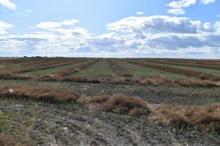 Photo 3: 4;27;26;12;NE in Rural Rocky View County: Rural Rocky View MD Land for sale : MLS®# C4270198