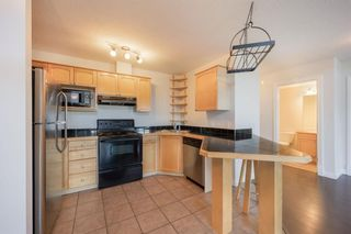 Photo 9: 303 1631 28 Avenue SW in Calgary: South Calgary Apartment for sale : MLS®# A1109353