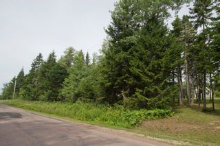 Photo 6: Lot Green Road: Westcock Vacant Land for sale (Sackville)  : MLS®# M106566