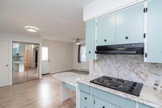 Photo 11: 319 Centrale Avenue in Ste Anne: R06 Residential for sale : MLS®# 202115601
