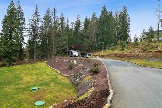 Photo 34: 12433 MCNUTT Road in Maple Ridge: Northeast House for sale : MLS®# R2547502