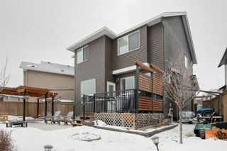 Photo 29: 106 Reunion Green NW: Airdrie Detached for sale : MLS®# A1065745