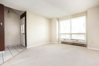 Photo 15: 162 Royal Avenue in Winnipeg: Scotia Heights Residential for sale (4D)  : MLS®# 202116390