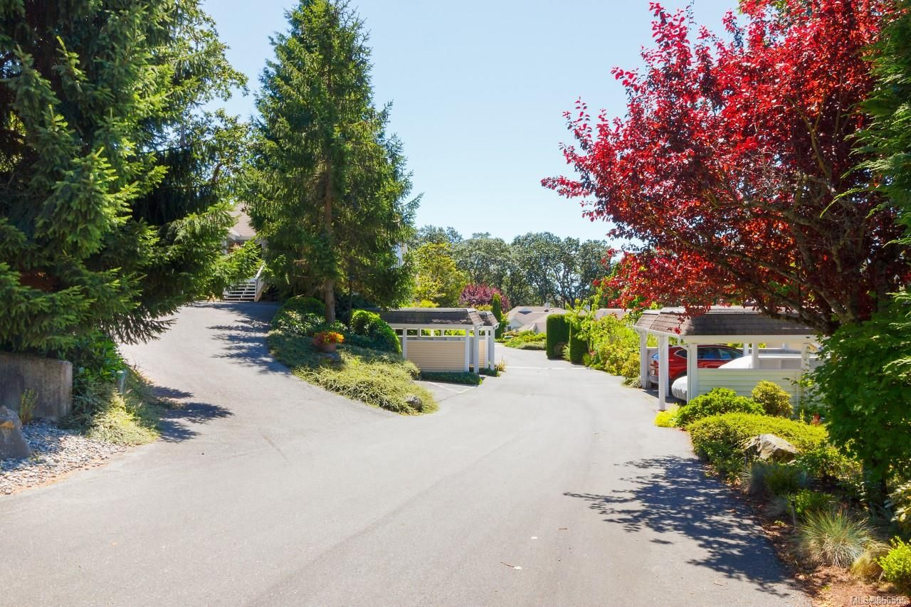 Main Photo: 3665 1507 Queensbury Ave in Saanich: SE Cedar Hill Row/Townhouse for sale (Saanich East)  : MLS®# 866565