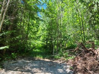 Photo 17: Lot 60 Terrace Place, in Blind Bay: Vacant Land for sale : MLS®# 10232783