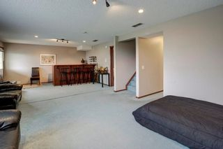 Photo 25: 325 CORAL SPRINGS Place NE in Calgary: Coral Springs Detached for sale : MLS®# A1066541