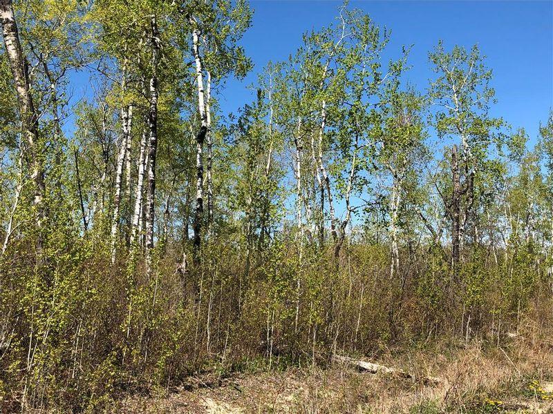 FEATURED LISTING: 6 Snow Goose Drive Lake Manitoba Narrows