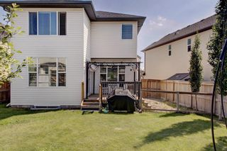 Photo 38: 40 BRIGHTONCREST Manor SE in Calgary: New Brighton Detached for sale : MLS®# A1016747
