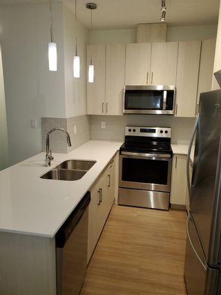 Photo 4: #305 17 COLUMBIA AV W: Devon Condo for sale : MLS®# E4204138