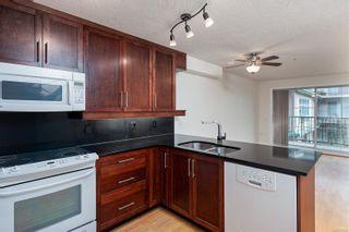 Photo 3: 206 3133 Tillicum Rd in : SW Tillicum Condo for sale (Saanich West)  : MLS®# 872528