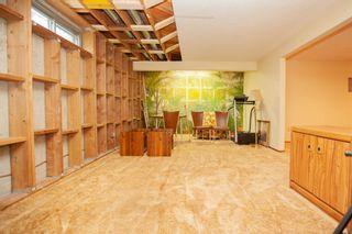 Photo 45: 4111 107A Street in Edmonton: Zone 16 House for sale : MLS®# E4249921