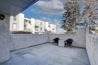 Photo 4: 1705 3500 Varsity Drive NW in Calgary: Varsity Row/Townhouse for sale : MLS®# A1096831