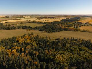 Photo 49: ON Township Road 355A: Rural Red Deer County Land for sale : MLS®# A1039276