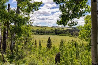 Photo 44: 30457 Rge Rd 44: Rural Mountain View County Detached for sale : MLS®# A1124513