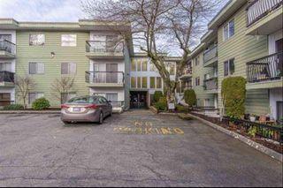 """Photo 4: 327A 8635 120 Street in Delta: Annieville Condo for sale in """"Delta Cedars"""" (N. Delta)  : MLS®# R2539226"""