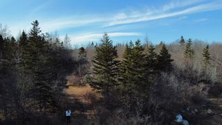 Photo 15: Lot West Sable Road in Louis Head: 407-Shelburne County Vacant Land for sale (South Shore)  : MLS®# 202103574