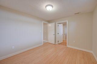Photo 29: 11523 51 Avenue in Edmonton: Zone 15 House for sale : MLS®# E4266418