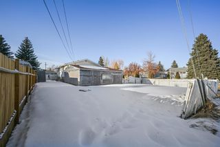 Photo 13: 244 Penbrooke Close SE in Calgary: Penbrooke Meadows Detached for sale : MLS®# A1074367