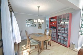 Photo 10: 19 Whitefield Place NE in Calgary: Whitehorn Detached for sale : MLS®# A1133052