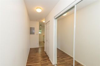 """Photo 14: 209 5577 SMITH Avenue in Burnaby: Central Park BS Condo for sale in """"COTTONWOOD GROVE"""" (Burnaby South)  : MLS®# R2495074"""