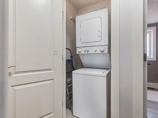 Photo 18: 401 343 4 Avenue NE in Calgary: Crescent Heights Apartment for sale : MLS®# C4204506
