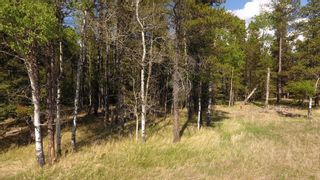 Photo 4: 5;5;23;12;SE - Lot #2 in Rural Rocky View County: Rural Rocky View MD Land for sale : MLS®# C4185892