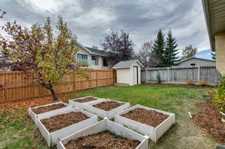 Photo 36: 11 Sanderling Hill NW in Calgary: Sandstone Valley Detached for sale : MLS®# A1149662