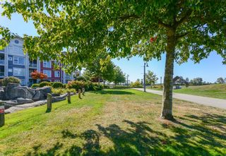 """Photo 28: 410 4500 WESTWATER Drive in Richmond: Steveston South Condo for sale in """"COPPER SKY WEST"""" : MLS®# R2615301"""