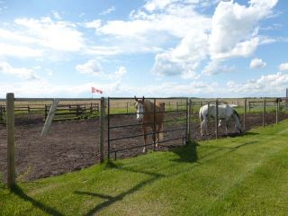 Photo 11: 1040 48520 Hwy 2A: Rural Leduc County House for sale : MLS®# E4230417