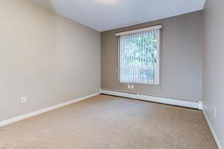 Photo 25: 6109 7331 South Terwilleger Drive in Edmonton: Zone 14 Condo for sale : MLS®# E4256187