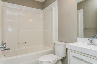 Photo 21: 9028 SCOTT Crescent in Edmonton: Zone 14 House for sale : MLS®# E4250588