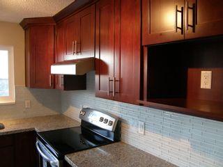 Photo 27:  in PORT COQUITLAM: Home for sale : MLS®# V980168